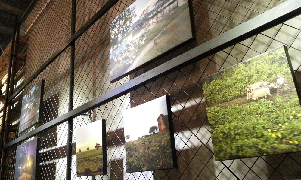 winwin photography exhibition